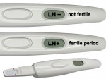 Display your fertile period